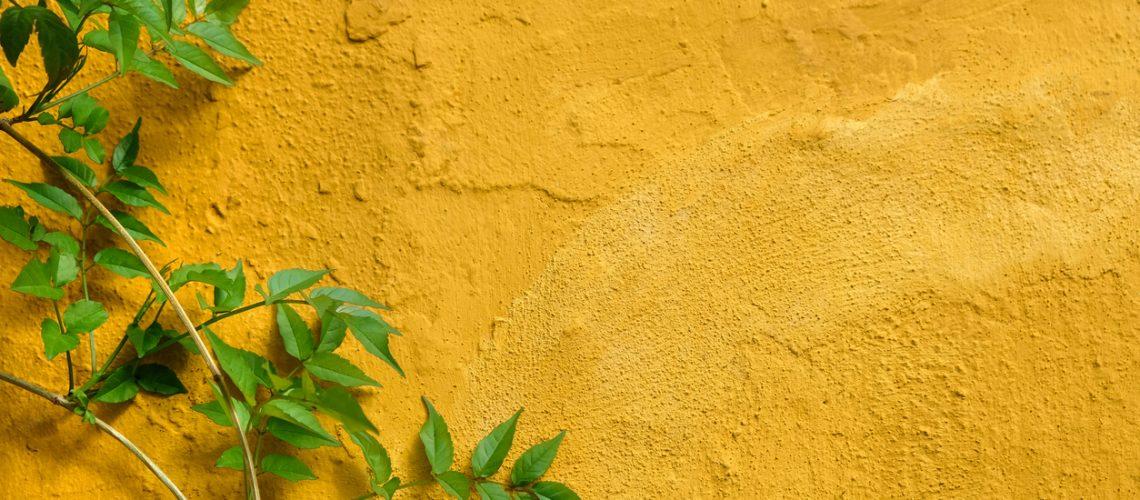 stucco-calgary